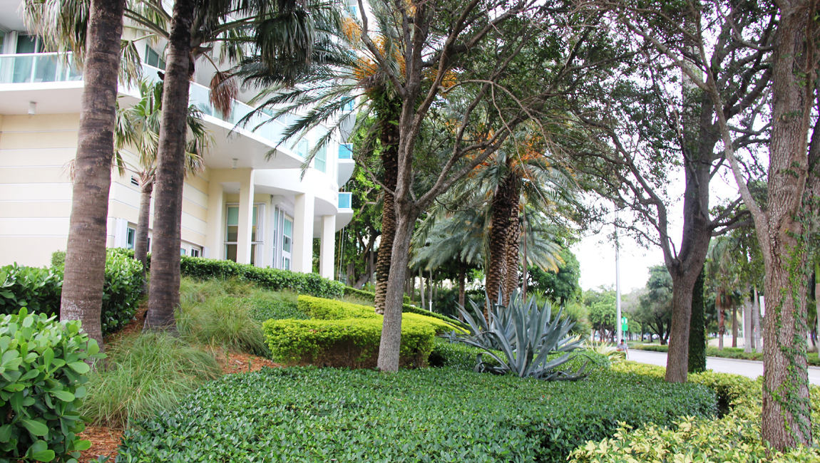 Grove Hill Tower – Coconut Grove, Florida